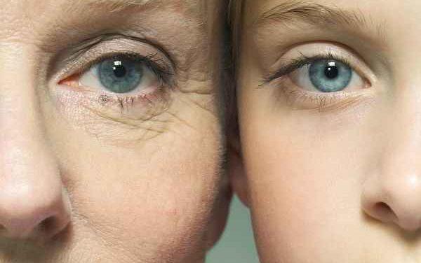 Как замедлить процесс старения организма и прожить дольше