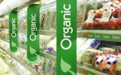 О проблемах «органического» питания