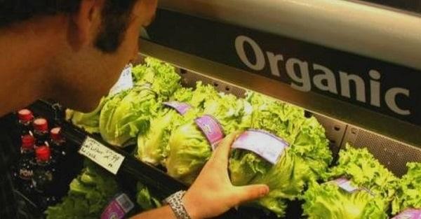 нитраты в продуктах питания